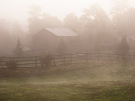 Mornings at Glen Highland Farm are typically ushered in with a delicate fog