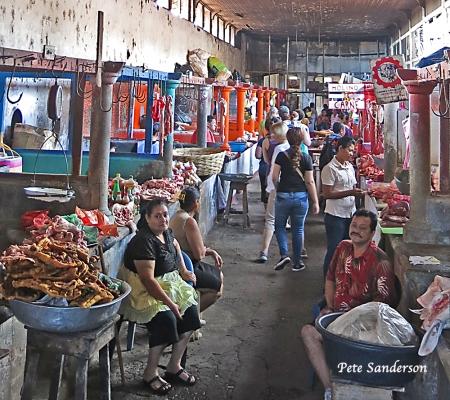 The Carne Row